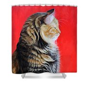 Multicolored Cat In Red Background  Shower Curtain