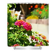 Multicolored Flowers Shower Curtain