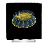 Multicolored Fractalart-2 Shower Curtain