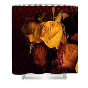 Multicolored Roses Wilting  Shower Curtain