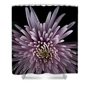 Mum Shower Curtain by Eric Christopher Jackson