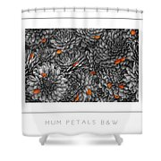 Mum Petals Bw Poster Shower Curtain