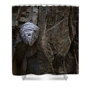 Mummy Head Shower Curtain by Barbara Schultheis