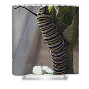 Munch Shower Curtain