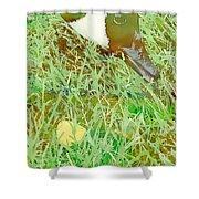 Munching On Green Grass Shower Curtain