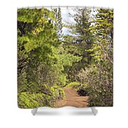 Munro Trail Shower Curtain by Ron Dahlquist - Printscapes