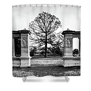 Muny Columns 2 Shower Curtain