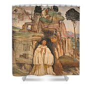 Mural Church Art Shower Curtain