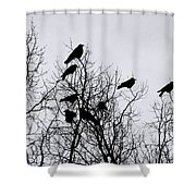 Murder On Music Row Shower Curtain