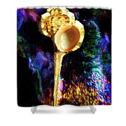 Murex Haustellum Seashell Shower Curtain
