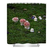 Muscaria Migration Shower Curtain