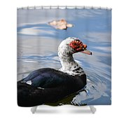 Muscovy Magic 2 Shower Curtain