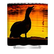Muscovy Sunset Shower Curtain