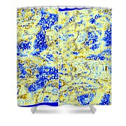 Muse 19 Shower Curtain