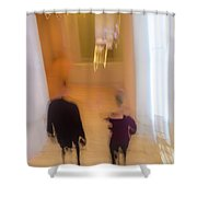 Museum Day Shower Curtain