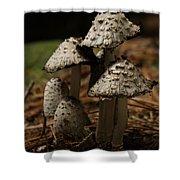 Mushroom Family Shower Curtain