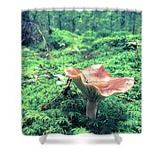 Mushroom In The Green Wood Shower Curtain