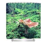 Mushroom In The Green Wood Shower Curtain