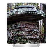 Mushroom Rock Shower Curtain