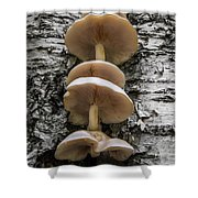 Mushroom Treehouse Shower Curtain