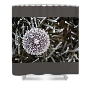 Mushroom With Ice Crystals Shower Curtain