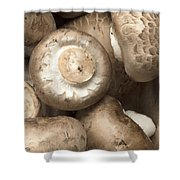 Mushrooms Abstract Closeup Shower Curtain
