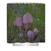 Mushrooms In Grass Shower Curtain