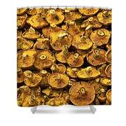 Mushrooms In Spain Shower Curtain