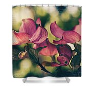 Music In Bloom Shower Curtain
