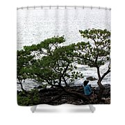 Musings In Hawaii Shower Curtain
