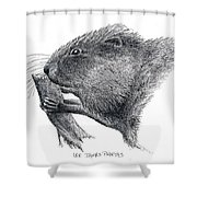 Muskrat Shower Curtain