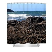 Mussels Shower Curtain