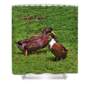 Must Be Love Shower Curtain