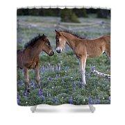 Mustang Foals Shower Curtain