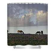 Mustang Group 17 Shower Curtain by Roger Snyder