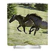 Mustang Mares Shower Curtain