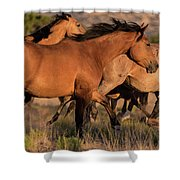 Mustang Run Shower Curtain