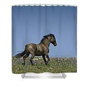 Mustang Running 1 Shower Curtain