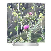 Mustard And Thistle Shower Curtain