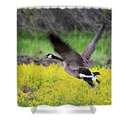 Mustard Flight Shower Curtain