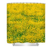 Mustard Flowers Shower Curtain