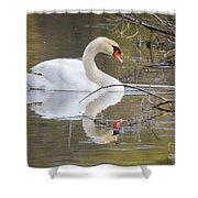 Mute Swan Glide II Shower Curtain