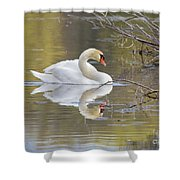 Mute Swan Reflection I Shower Curtain