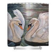 Mute Swans - River Severn Shower Curtain
