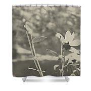 Muted Beauty 1 Shower Curtain