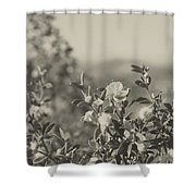Muted Beauty 2 Shower Curtain