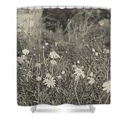 Muted Beauty 4 Shower Curtain