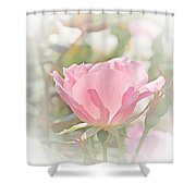 Muted Rose  Shower Curtain