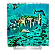 Mutton Snapper Shower Curtain