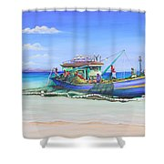 Mv Alice Mary Shower Curtain